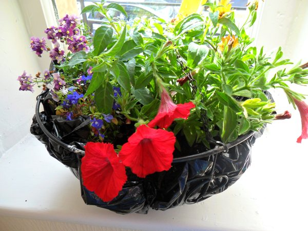 Hanging basket made during a community involvement day.